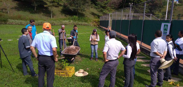 Día del medio ambiente en Sonesta Pereira